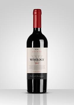mockup garrafa vinho